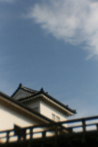 IMG_1617.jpg