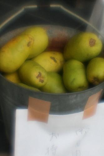 fruit0001.jpg