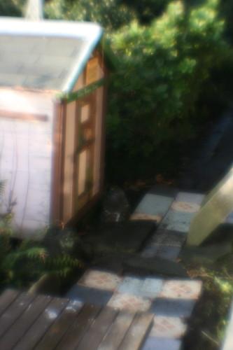 little house_002.jpg