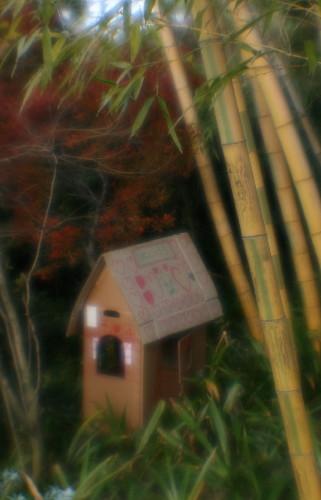 little house_005.jpg