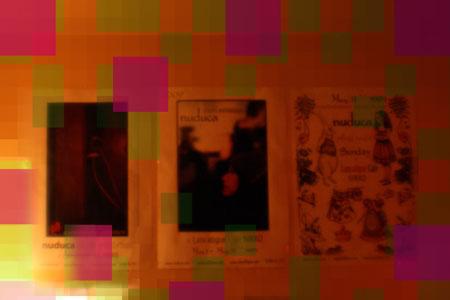 nuduca posters450.jpg
